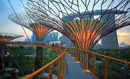 去新加坡旅游注意事项