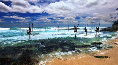 [深圳出发]【深起港止】斯里兰卡 6天5晚经典文化之旅