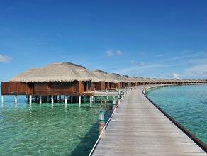 马尔代夫阿雅达岛 最受年轻女性喜欢的六星岛屿