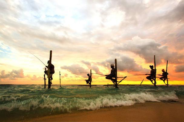 蓝海岛旅行社行业发展高峰论坛